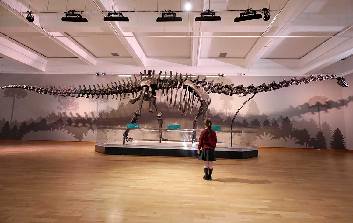 ulster-museum-city-tours-hop-on-hop-off